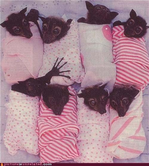bat-tamales
